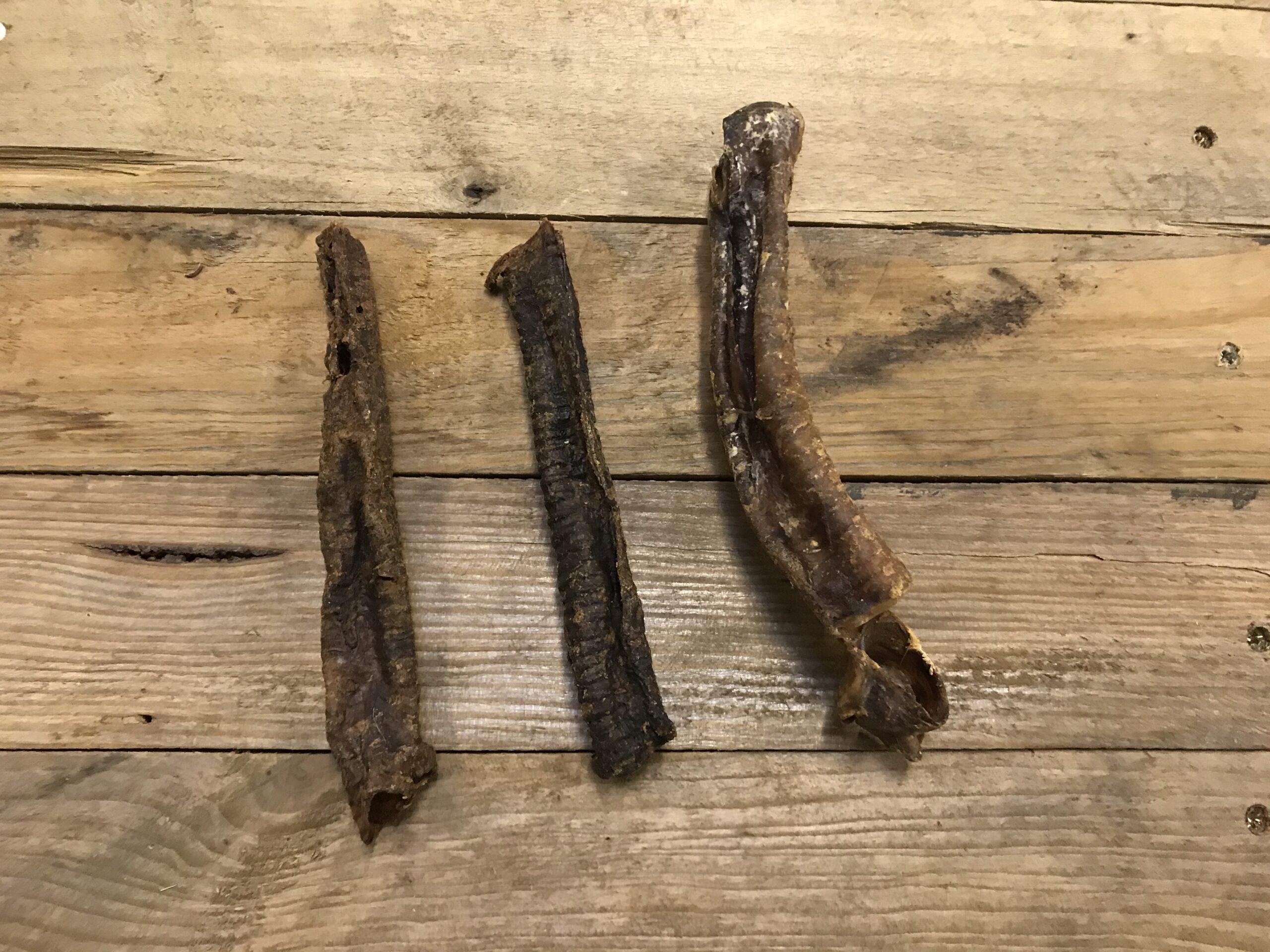 Goat Trachea – 1 Pc